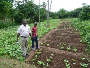 SOWTech Soil Donuts for Flexigester system at Namisu, Malawi